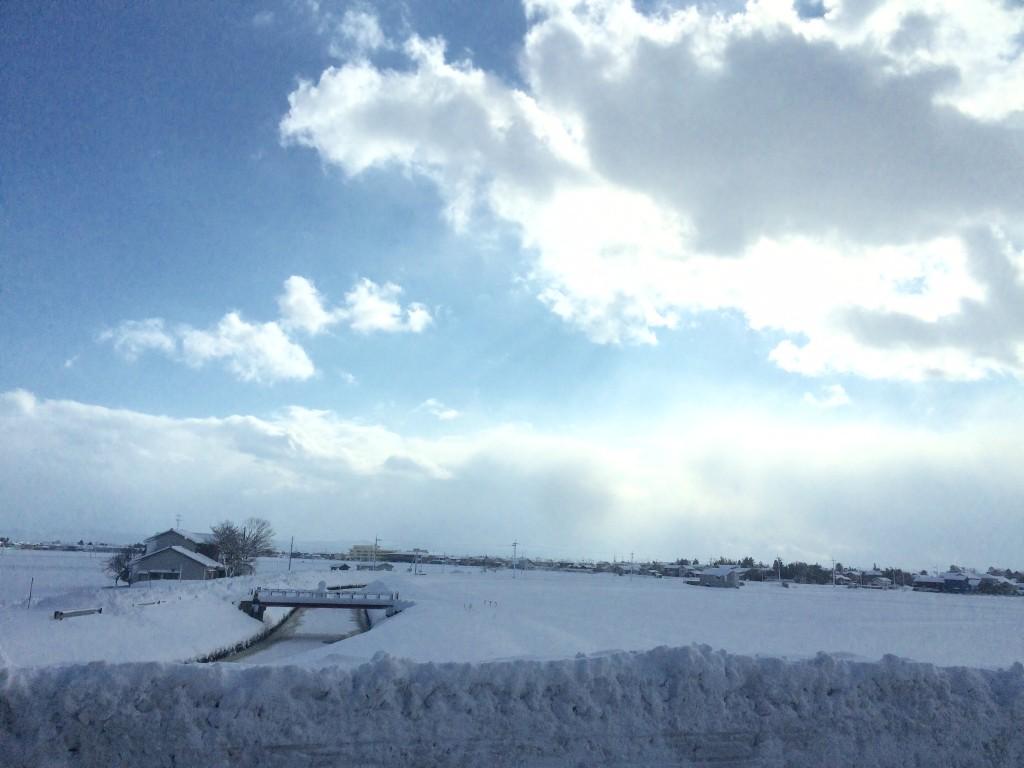 ギャッベの中にも雪景色☃