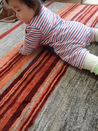 お子さまにとってのじゅうたんは世界そのもの