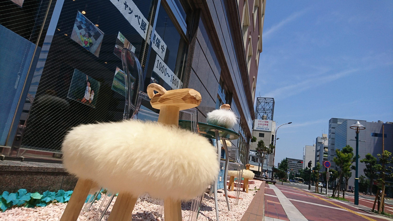 【イベント情報】8月のアートギャッベ200枚展