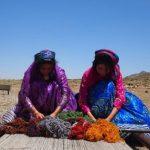 ギャッベを織るイラン カシュガイ族の女性