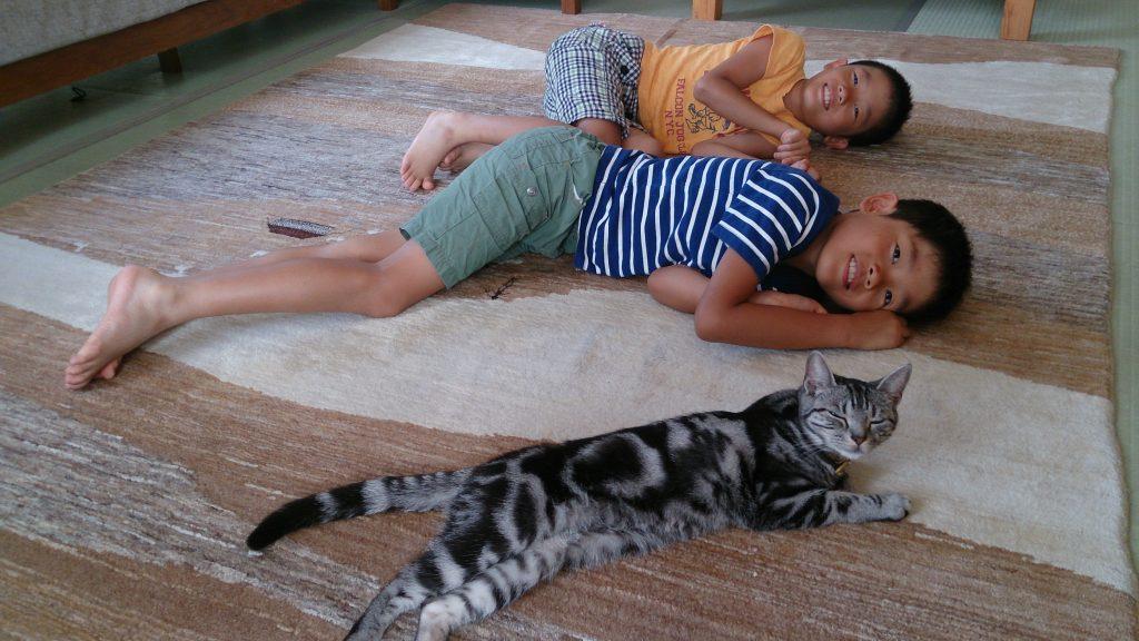 ギャッベの上で兄弟と猫ちゃんでごろーん