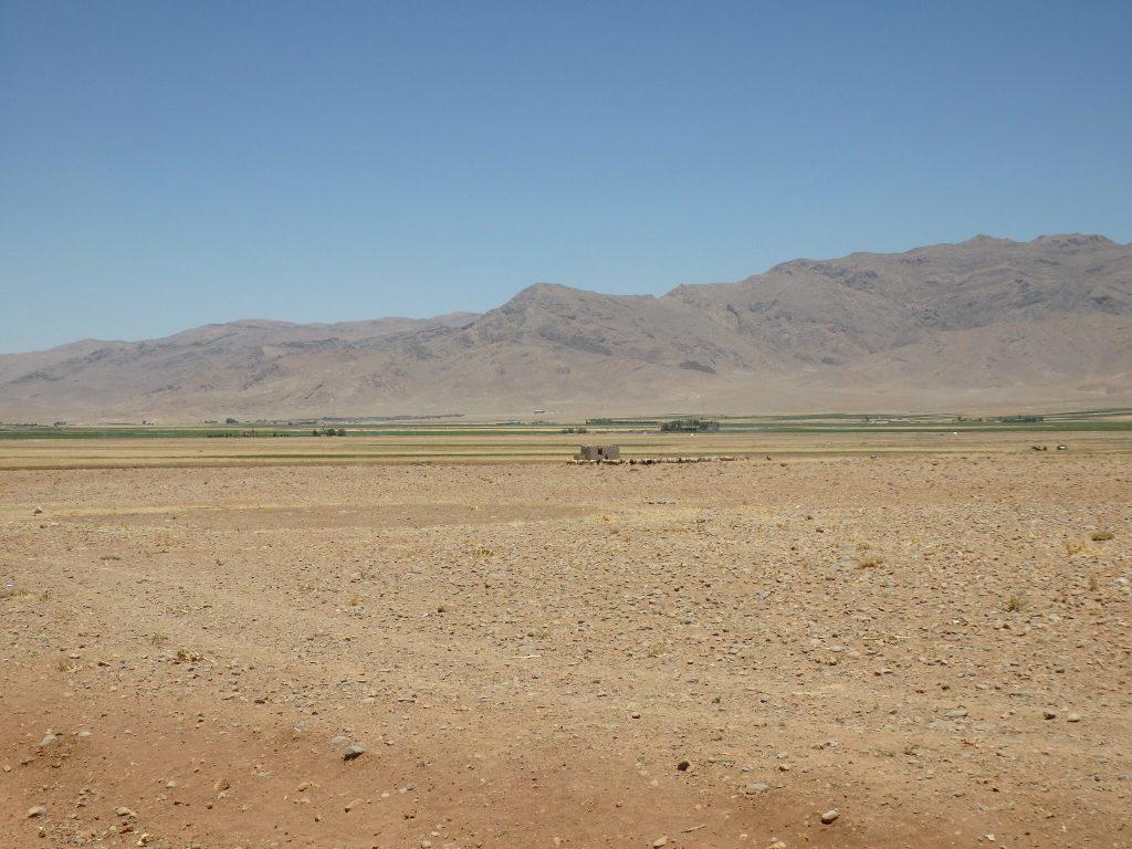 ギャッベの故郷沙漠